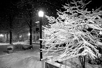 Snowmaggedon, Washington DC, 2010